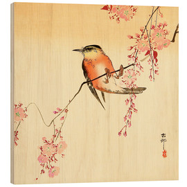 Hout print  Red Bird and Cherry Blossoms - Ohara Koson