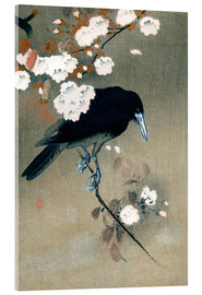 Acrylglas print  Crow and Cherry Blossoms - Ohara Koson