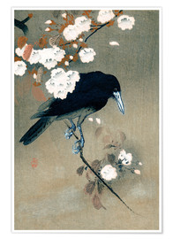 Premium poster Crow and Cherry Blossoms