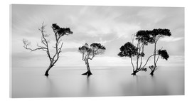 Acrylglas print  Tree silhouettes winding over a lake - Steven Fudge