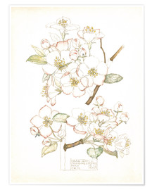 Premium poster  Apple blossom - Charles Rennie Mackintosh