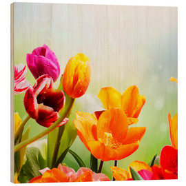 Hout print  Tulips with Water Drops - Lichtspielart