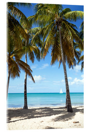 Acrylglas print  Palm beach with sailboat, Martinique - Matteo Colombo