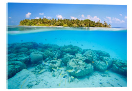 Acrylglas print  Reef and tropical island, Maldives - Matteo Colombo