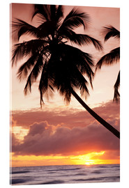Acrylglas print  Tropical sunset in Barbados, Caribbean - Angelo Cavalli