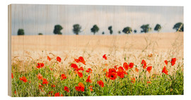 Hout print  Poppies on the sidelines - Matthew Williams-Ellis
