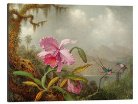 Aluminium print  Cattleya Orchid and Three Brazilian Hummingbirds - Martin Johnson Heade