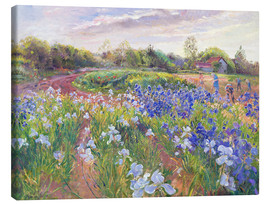 Canvas print  Field of flowers - Timothy Easton
