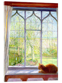 Acrylglas print  Cat in window in spring - Timothy Easton