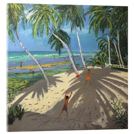 Acrylglas print  Palm trees, Clovelly beach, Barbados - Andrew Macara