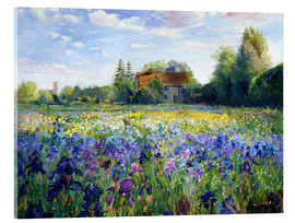 Acrylglas print  Field of flowers in the sunset - Timothy Easton