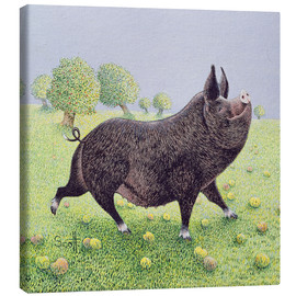 Canvas print  Proud Pig - Pat Scott