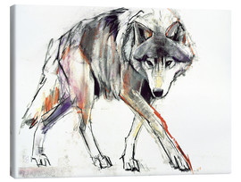 Canvas print  Wolf in search - Mark Adlington