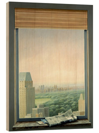 Hout print  New York Central Park - Lincoln Seligman