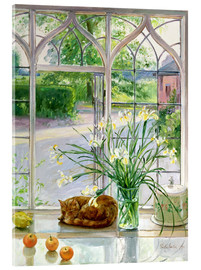 Acrylglas print  Sleeping cat in the window - Timothy Easton