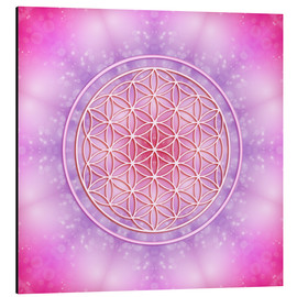 Aluminium print  Flower of life - unconditional love - Dolphins DreamDesign