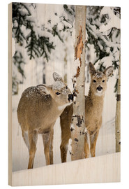 Hout print  Deers in a winter forest - Michael Interisano