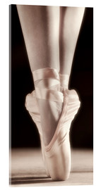 Acrylglas print  Ballet Shoes - Don Hammond