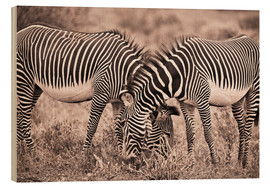 Hout print  Two Zebras Grazing Together - David DuChemin