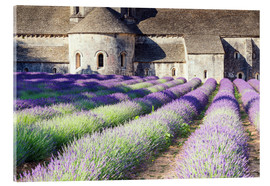 Acrylglas print  Famous Senanque abbey with its lavender field, Provence, France - Matteo Colombo