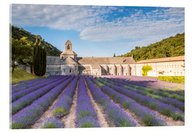 Acrylglas print  Famous Senanque abbey with lavender field, Provence, France - Matteo Colombo