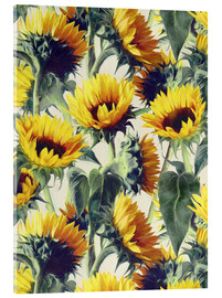 Acrylglas print  Sunflowers forever - Micklyn Le Feuvre