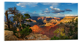 Acrylglas print  Grand Canyon with knotty pine - Michael Rucker