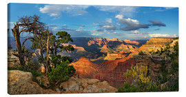 Canvas print  Grand Canyon with knotty pine - Michael Rucker