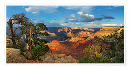 Premium poster  Grand Canyon with knotty pine - Michael Rucker