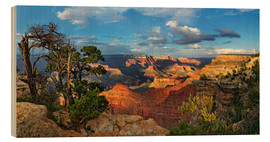 Hout print  Grand Canyon with knotty pine - Michael Rucker