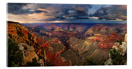 Acrylglas print  Grand Canyon View - Michael Rucker