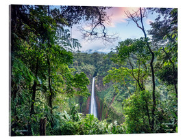 Acrylglas print  Rainforest and Waterfall, Costa Rica - Matteo Colombo
