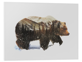PVC print  Arctic grizzly bear - Andreas Lie