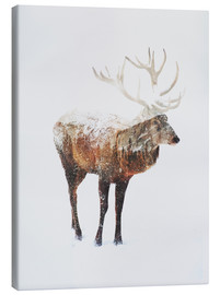 Canvas print  Arctic Deer - Andreas Lie