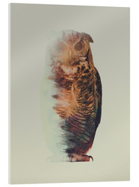Acrylglas print  Norwegian Woods The Owl - Andreas Lie