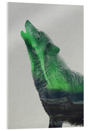 Acrylglas print  Howling in the Aurora Borealis - Andreas Lie