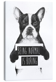 Canvas print  Being normal is boring - Balazs Solti