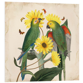 PVC print  Oh my parrot II - Mandy Reinmuth