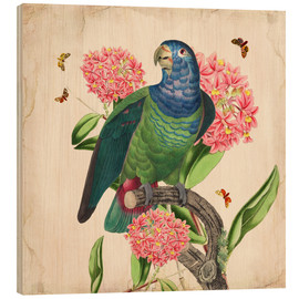 Hout print  OhMyParrot IV - Mandy Reinmuth