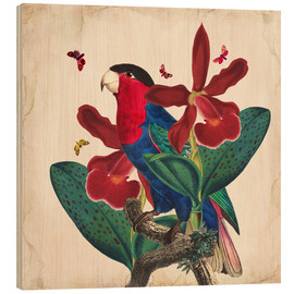 Hout print  Oh My Parrot VII - Mandy Reinmuth