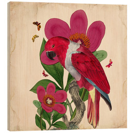 Hout print  Oh My Parrot VI - Mandy Reinmuth