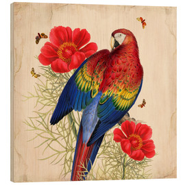 Hout print  Oh My Parrot III - Mandy Reinmuth