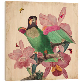 Hout print  Oh my parrot VIII - Mandy Reinmuth