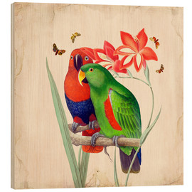 Hout print  Oh My Parrot I - Mandy Reinmuth