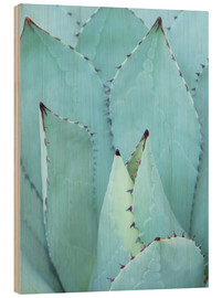 Hout print  Agave
