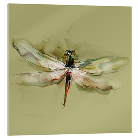 Acrylglas print  Dragonfly in watercolor