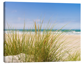 Canvas print  Beach with dune grass in sand