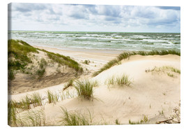 Canvas print  Sand dunes on the Baltic sea