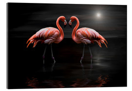 Acrylglas print  Flamingos at night - Heike Langenkamp