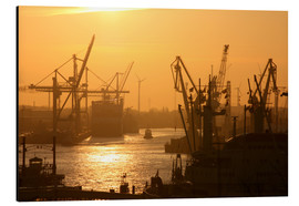 Aluminium print  Morning light in the Hamburg harbor